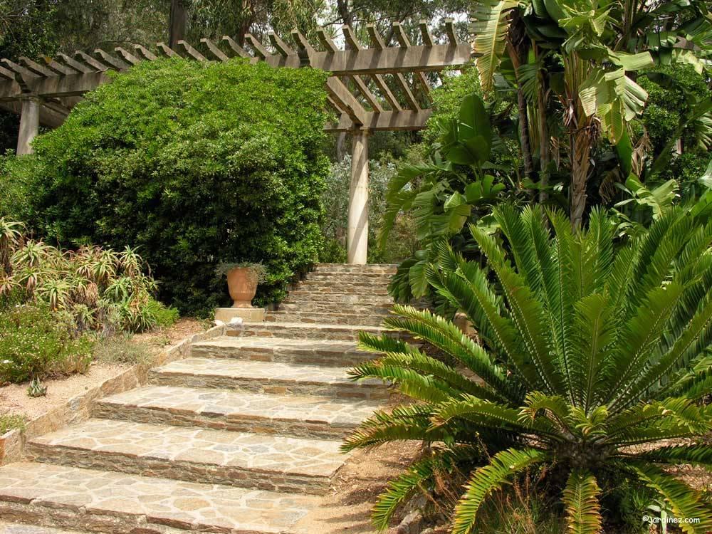 Domaine du rayol le jardin des m diterran es photo 9 - Domaine du rayol le jardin des mediterranees ...