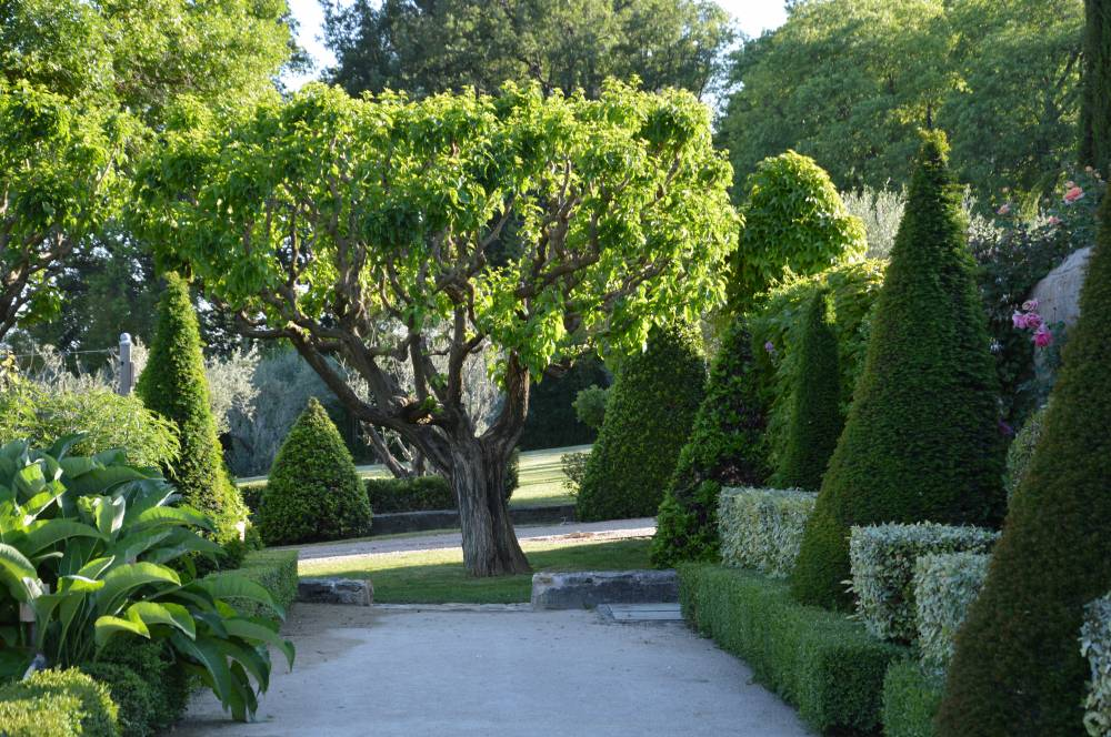 Gardens Of Val Joanis Castle photo 2