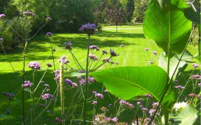 Le Jardin des Olfacties photo 1