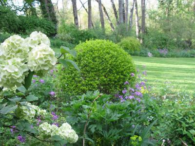 Jardin de Liliane photo 1