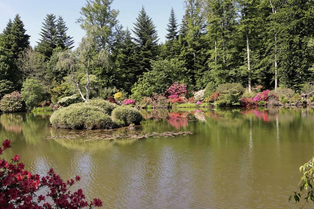 Jardin botanique de gondremer for Bal des citrouilles jardin botanique
