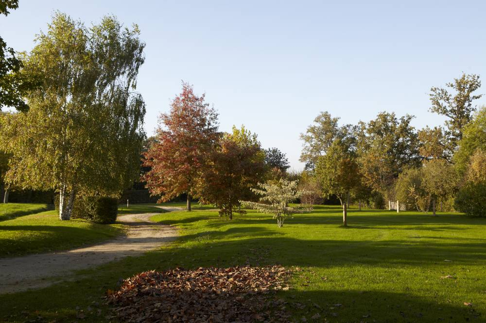 Jardin de la Borde photo 6