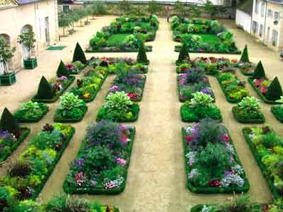 Jardin de l'Orangerie photo 0