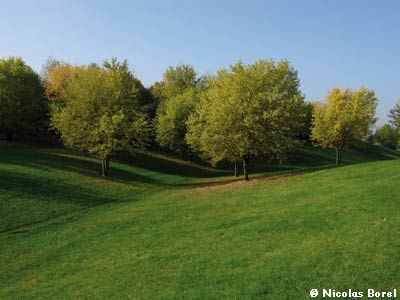 Parc Départemental Georges-Valbon photo 12