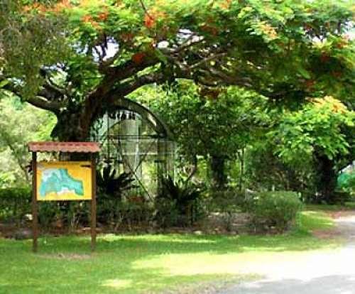 Le parc zoologique et forestier quelques minutes du - Deco jardin saint brisson sur loire fort de france ...
