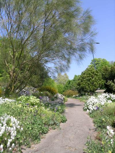 City and University Botanical Garden photo 3