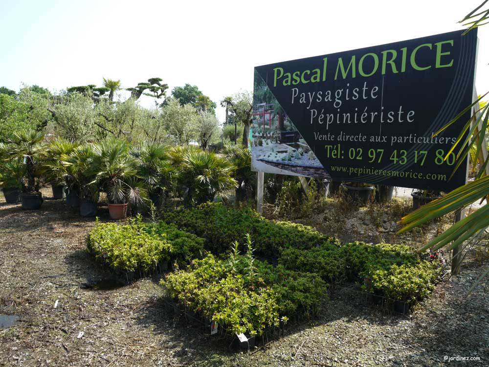 Pascal Morice Landscape Design photo 0