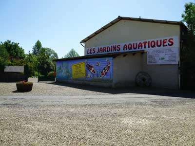 P pini re les jardins aquatiques photo 1 - Les jardins aquatiques saint didier sur chalaronne ...