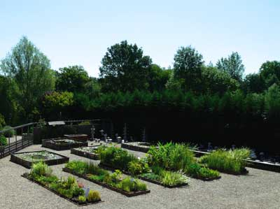 Nursery The Water Gardens photo 3