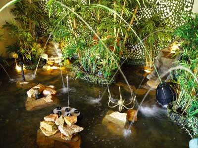 P pini re les jardins aquatiques photo 9 - Les jardins aquatiques saint didier sur chalaronne ...