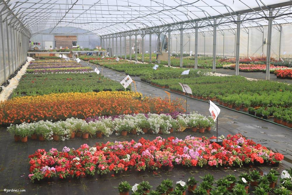 The Greenhouses of Launay photo 0