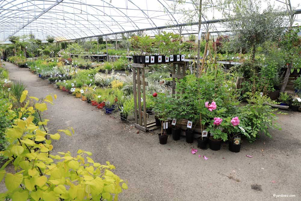 Prunier Nurseries photo 1
