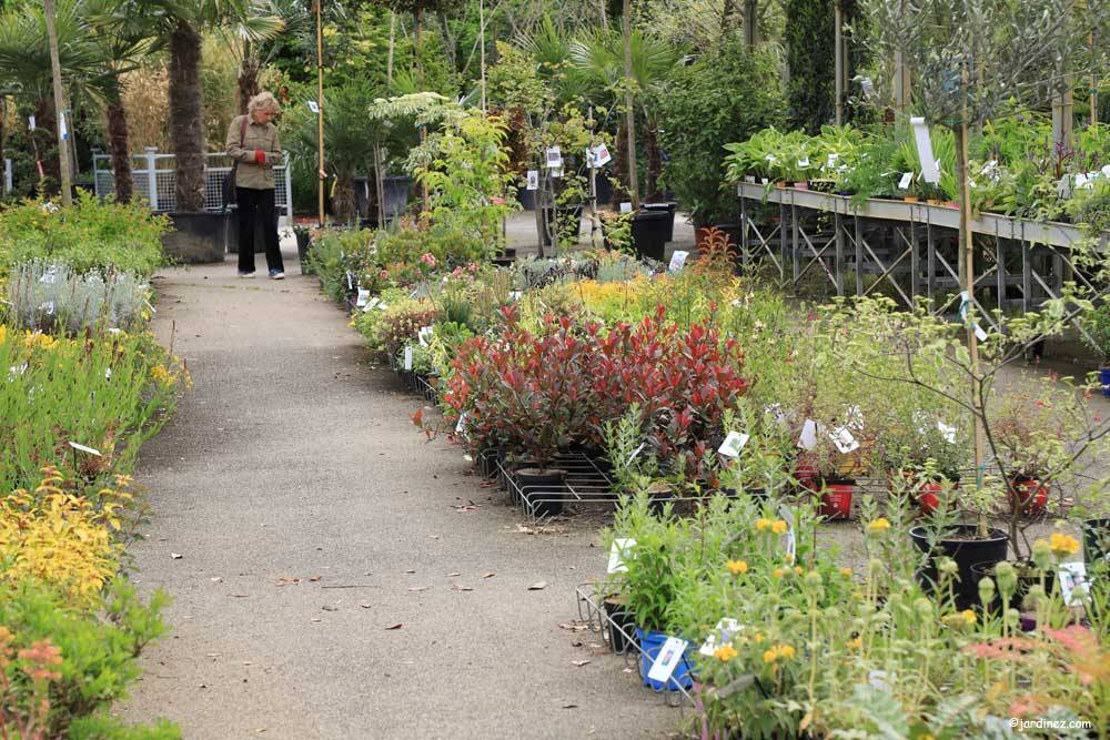 Prunier Nurseries photo 7
