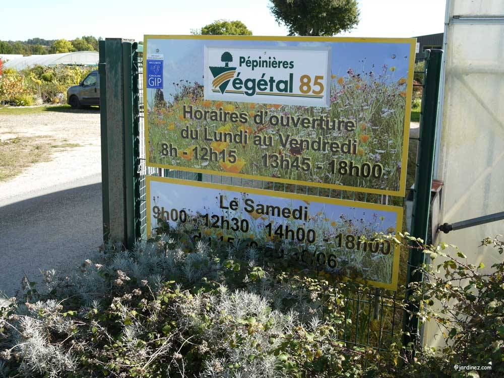 Garden Nurseries Vendée 85 Tree And Plant Suppliers
