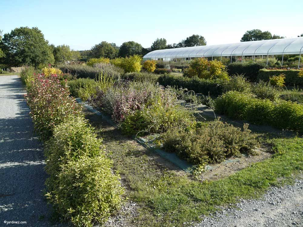 Bocage Tree Nurseries photo 11