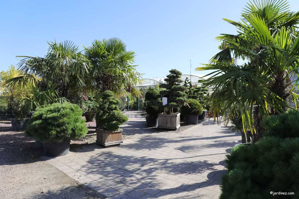 The Ramette Nurseries photo 0