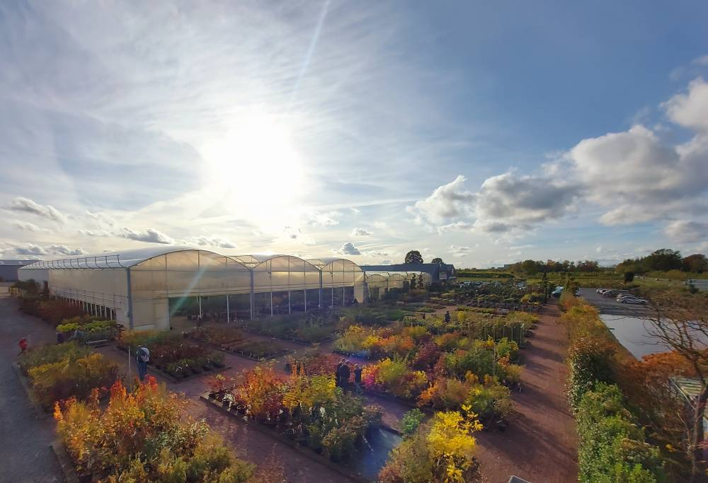 The Ramette Nurseries photo 6